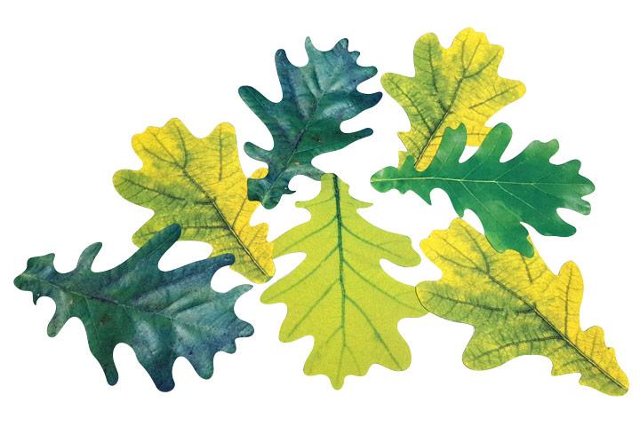 laser cut fabric leaves